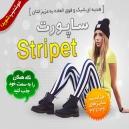 ساپورت طرح جدید استرایپت Stripet